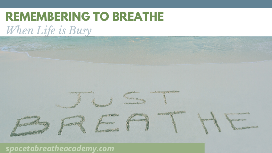 Remembering to Breathe when Life is Busy